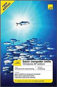 Teach Yourself Basic Computer Skills