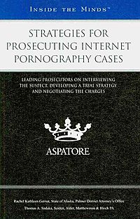 Strategies for Prosecuting Internet Pornography Cases