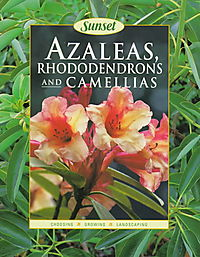 Azaleas, Rhododendrons and Camellias