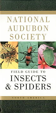National Audubon Society Field Guide to North American Insects and Spiders