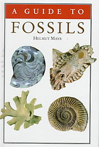 A Guide to Fossils
