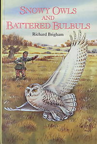 Snowy Owls and Battered Bulbuls