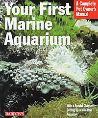 Your First Marine Aquarium