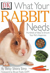 What Your Rabbit Needs