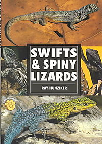 Swifts & Spiny Lizards