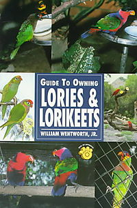 Guide to Owning Lories & Lorikeets