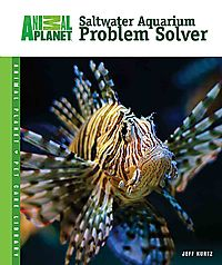 Saltwater Aquarium Problem Solver