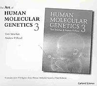 The Art of Human Molecular Genetics