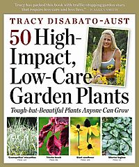 50 High-Impact Low-Care Garden Plants