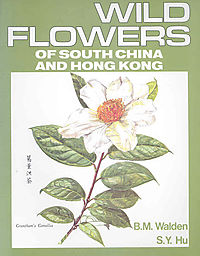 Wild Flowers of South China And Hong Kong
