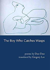 The Boy Who Catches Wasps