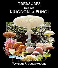 Treasures from the Kingdom of Fungi