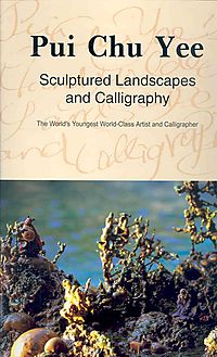 Sculptured Landscapes and Calligraphy