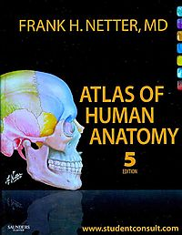 Atlas of Human Anatomy Edition 5 / Gray's Anatomy for Students Edition 2