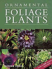 Ornamental Foliage Plants