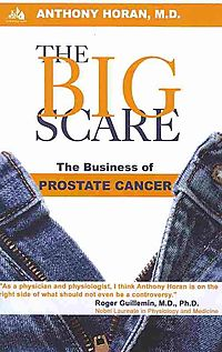 The Big Scare