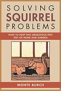Solving Squirrel Problems