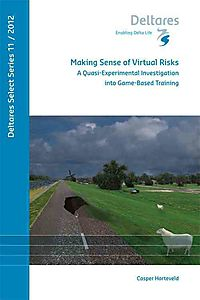 Making Sense of Virtual Risks