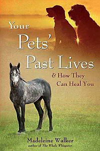 Your Pets' Past Lives