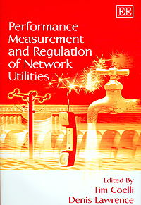 Performance Measurement And Regulation of Network Utilities